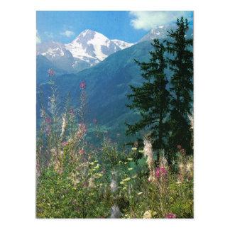 Cartão Postal Suiça, região de Jungfrau na primavera