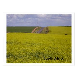 Cartão Postal Sul - cenário africano