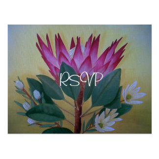 Cartão Postal Sul - Protea gigante africano que Wedding RSVP com
