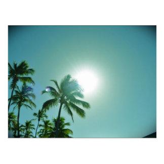 Cartão Postal Sun tropical