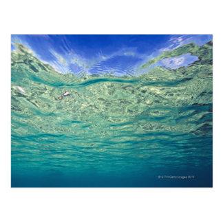 Cartão Postal Superfície do mar tópico claro visto de
