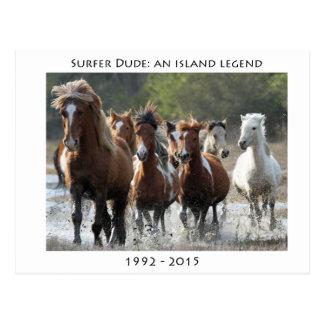 Cartão Postal Surfista e seu banda