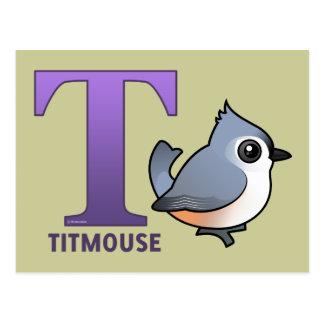 Cartão Postal T é para o Titmouse