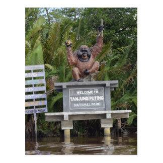 Cartão Postal Tanjung que pôr o parque nacional, ilha de Bornéu