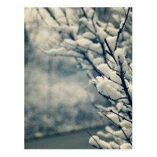 Cartão Postal Tapete do rato nevado da árvore