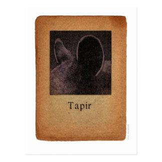 Cartão Postal Tapir