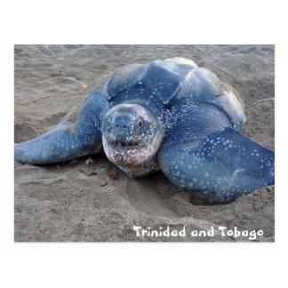 Cartão Postal Tartaruga de Leatherback em Trinidad and Tobago