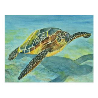 Cartão Postal Tartaruga de mar
