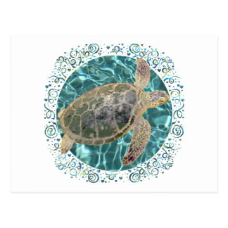 Cartão Postal Tartaruga de mar verde juvenil