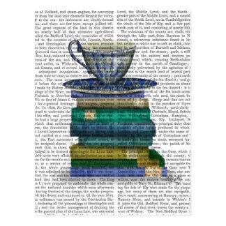 Cartão Postal Teacup e livros
