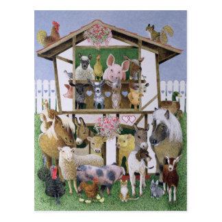 Cartão Postal Teatro animal