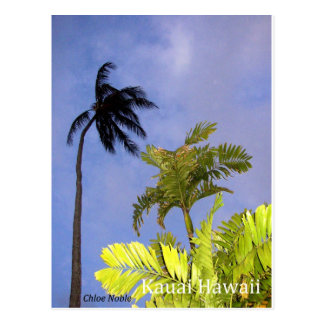 Cartão Postal Tempestade que vem - Kauai, Havaí