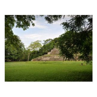 Cartão Postal Templo maia Belize América Central de Jaguar