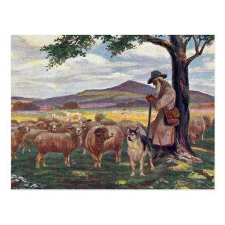 Cartão Postal Tendendo o vintage dos carneiros