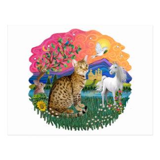 Cartão Postal Terra da fantasia (ff) - Ocicat