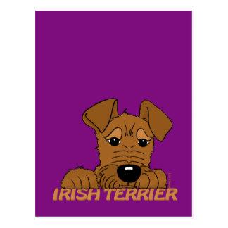 Cartão Postal Terrier irlandesa cabeça Cute