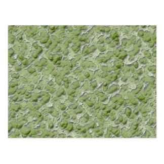 Cartão Postal Teste padrão do efeito das algas verdes