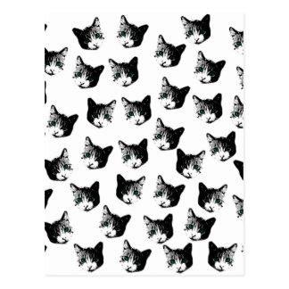 Cartão Postal Teste padrão do gato