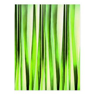 Cartão Postal Teste padrão Stripy verde eterno