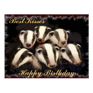 Cartão Postal Texugo bonito Cubs