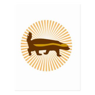 Cartão Postal texugo de mel