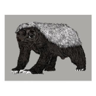 Cartão Postal Texugo de mel sem medo com design animal da