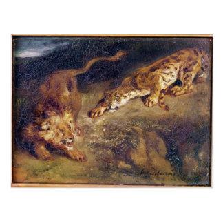 Cartão Postal Tigre e leão