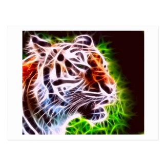 Cartão Postal Tigre elementar