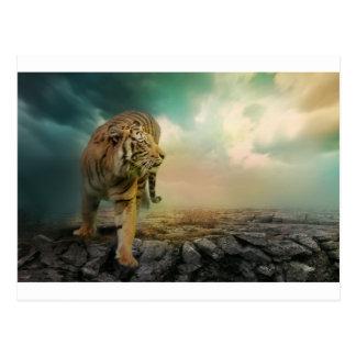 Cartão Postal Tigre grande