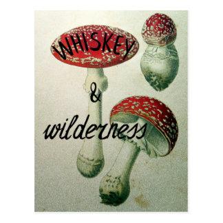Cartão Postal Toadstool do uísque & da região selvagem