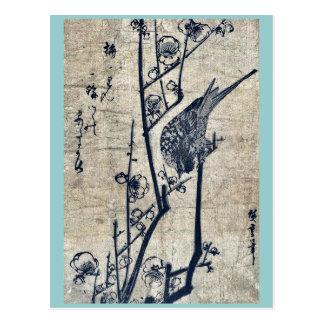 Cartão Postal Toutinegra de Bush em um ramo da ameixa por Ando,