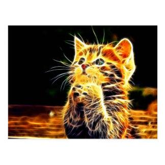 Cartão Postal Trabalhos de arte do gato 3d