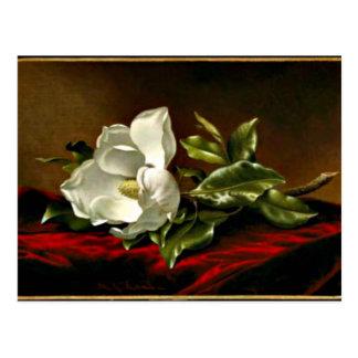 Cartão Postal Trabalhos de arte Grandiflora da magnólia
