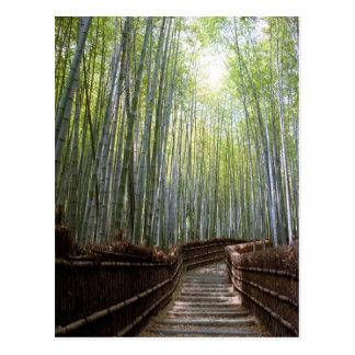 Cartão Postal Trajeto através do bambu