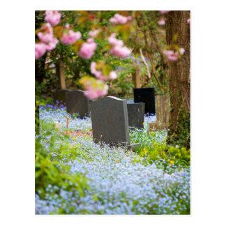 Cartão Postal Tranquilidade selvagem, churchyard bonito. Hopwas