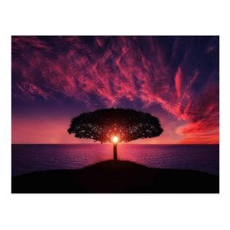 Cartão Postal Tree in the sunset