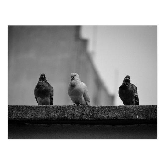 Cartão Postal - Três Pombos (Avenida Paulista)|Nº3