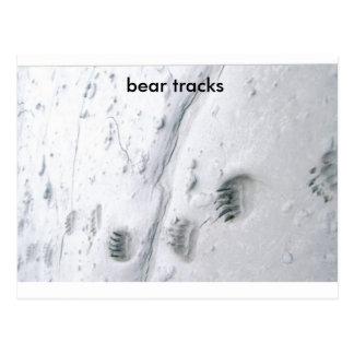 Cartão Postal trilhas do urso, trilhas do urso