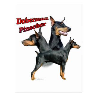 Cartão Postal Trio 2 do Pinscher do Doberman