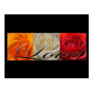 Cartão Postal Trio dos rosas
