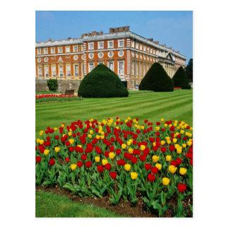 Cartão Postal Tulipas vermelhas no Hampton Court, flowe de