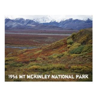 Cartão Postal Tundra do caribu que gira TA vermelha McKinley PK