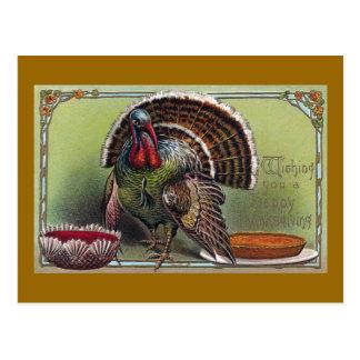 Cartão Postal Turquia, molho de arando & acção de graças do