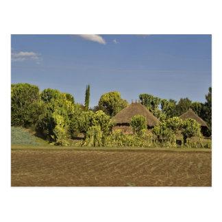 Cartão Postal Um campo cultivado na frente das casas de telhado