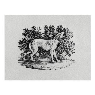 Cartão Postal Um cão 'da história dos Quadrupeds