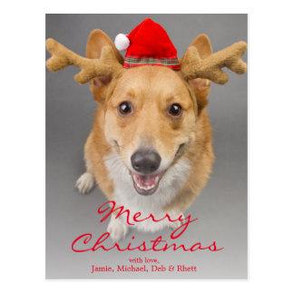 Cartão Postal Um cão vermelho e branco do Corgi de Galês do