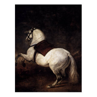 Cartão Postal Um cavalo branco por Diego Velázquez