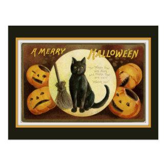 Cartão Postal Um gato preto e umas abóboras do vintage alegre do