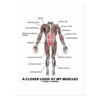 Cartão Postal Um olhar mais atento em meus músculos