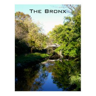Cartão Postal Um outro lado do Bronx